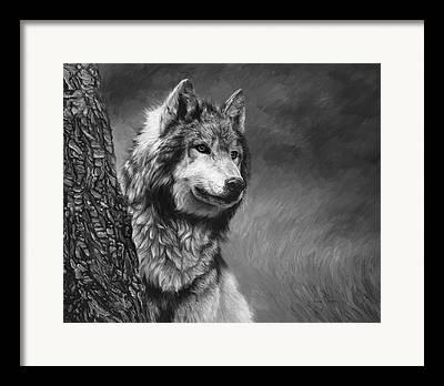 Grey Wolves Framed Prints