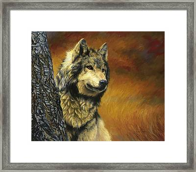 Gray Wolf Framed Print by Lucie Bilodeau