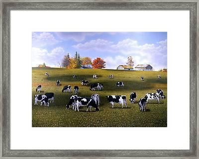 Grazing Holsteins Framed Print by Conrad Mieschke