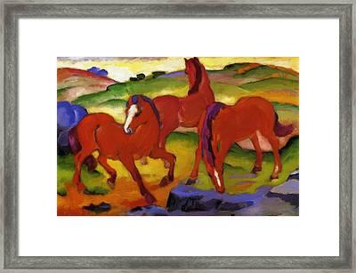 Grazing Horses Iv The Red Horses 1911 Framed Print