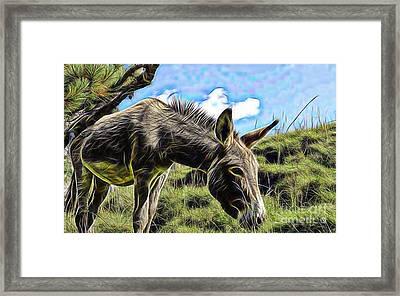 Grazing Framed Print by Marvin Blaine