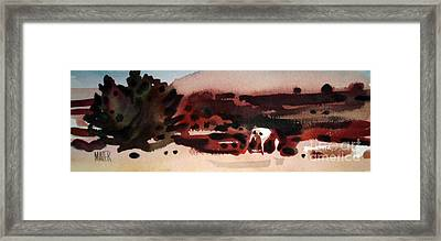Grazing Pinto Framed Print by Donald Maier