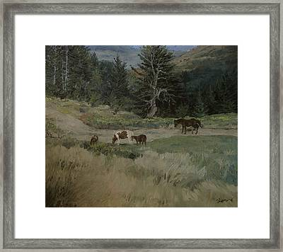 Grazing Framed Print by Richard Ong