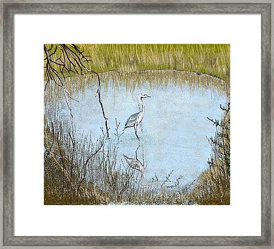 Great Blue Framed Print by Carole Boyd