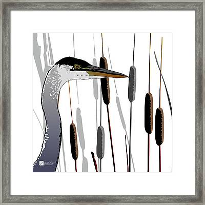 Great Blue Heron - Light Background Framed Print