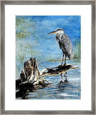 Great Blue Heron  Framed Print by Sibby S