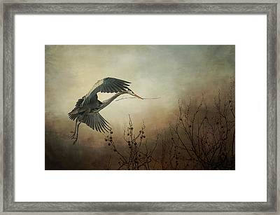 Great Blue Heron - Textured Photograph Framed Print