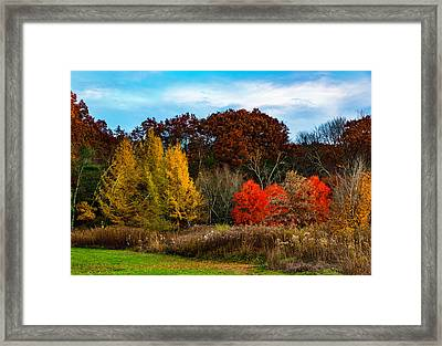 Great Brook Farm Autumn Framed Print