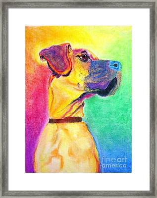 Great Dane - Rapture Framed Print by Alicia VanNoy Call