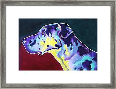 Great Dane - Boz Framed Print
