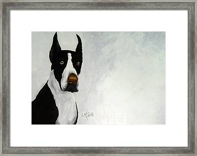 Great Dane Framed Print by Dick Larsen