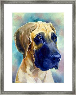 Great Dane Pup Framed Print by Lyn Cook