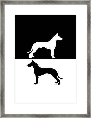 Great Danes Framed Print