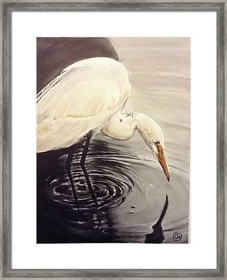Great Egret , Mirror Framed Print by Annie Poitras