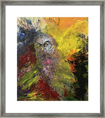 Great Grey Owl Framed Print by Sean Seal