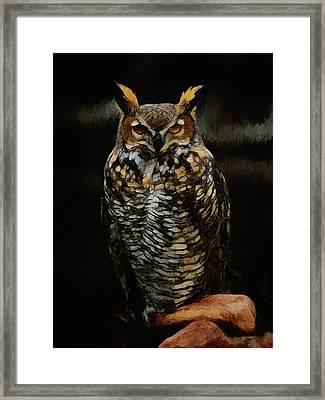 Great Horned Owl Da Framed Print by Ernie Echols