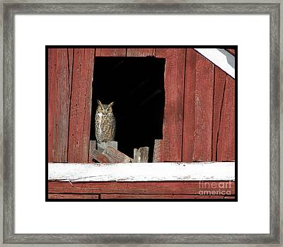 Framed Print featuring the photograph Great Horned Owl by Daniel Hebard