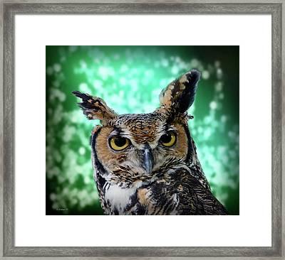 Great Horned Owl Face Framed Print
