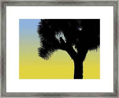 Great Horned Owl In A Joshua Tree Silhouette At Sunrise Framed Print