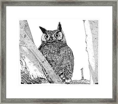 Great Horned Owl In A Tamarisk Framed Print