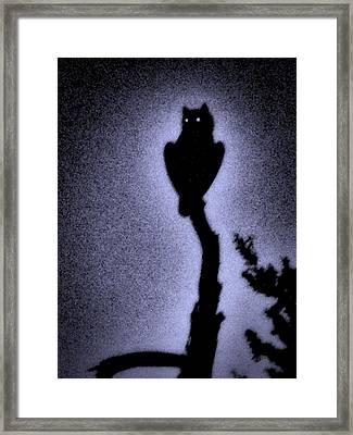 Great Horned Owl In The Desert 4 Framed Print