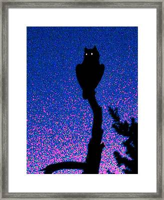 Great Horned Owl In The Desert Framed Print