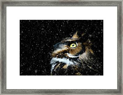Great Horned Owl In The Snow Framed Print by Tracy Munson