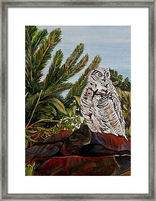 Great Horned Owl - Owl On The Rocks Framed Print by Marilyn  McNish