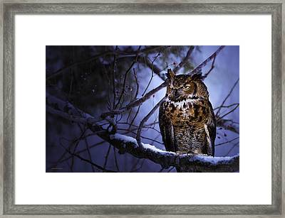 Great Horned Framed Print by Ron Jones