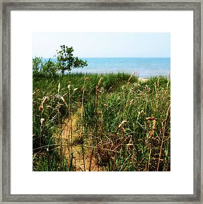 Framed Print featuring the photograph Great Lake Beach Path by Michelle Calkins