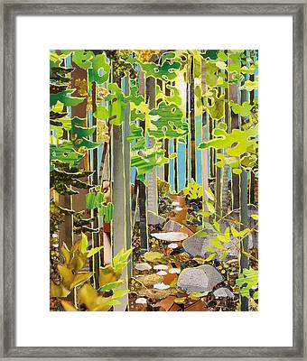 Great Maine Woods Framed Print