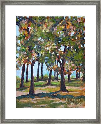 Great Outdoors Framed Print
