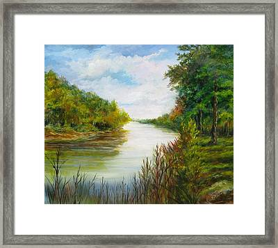 Great Pee Dee River Sold Framed Print