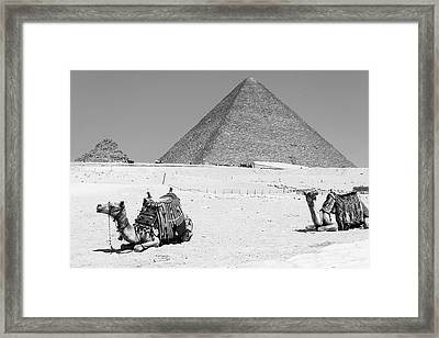 Framed Print featuring the photograph great pyramids of Giza by Silvia Bruno