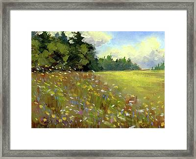 Great Salt Bay Meadows Framed Print