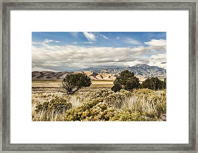 Great Sand Dunes National Park And Preserve Framed Print