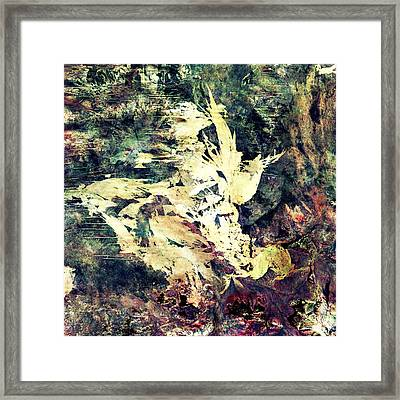 Great Sandy Scars  Framed Print by Earthlandish
