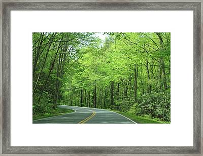 Great Smokey Mountains Framed Print by Karen Ruhl