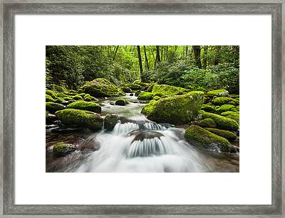 Great Smoky Mountain National Park Roaring Fork Mountain Stream Framed Print by Mark VanDyke