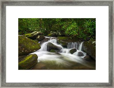 Great Smoky Mountains Gatlinburg Tn Roaring Fork Waterfall Nature Framed Print by Dave Allen
