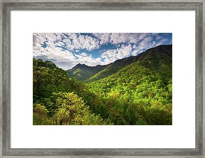 Great Smoky Mountains Gatlinburg Tn Spring Scenic Landscape Framed Print by Dave Allen