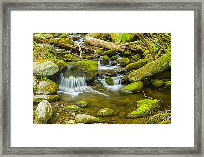 Great Smoky Mountains National Park River Framed Print