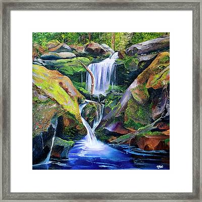 Great Smoky Waterfall Framed Print