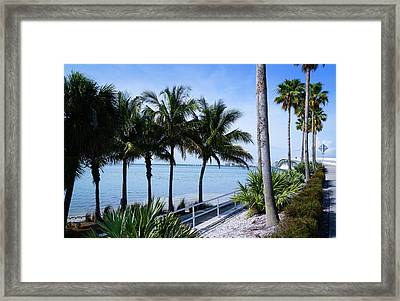 Great View Framed Print