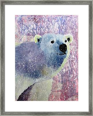 Great White Bear Framed Print by David Raderstorf