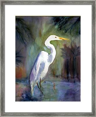 Great White Egret Framed Print by Carol Sprovtsoff