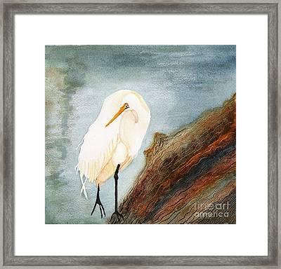Great White Egret Framed Print by Georgia Johnson
