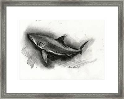 Great White Shark Drawing Framed Print