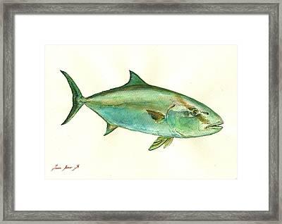 Greater Amberjack Fish Framed Print by Juan  Bosco