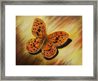 Greek Butterfly Framed Print